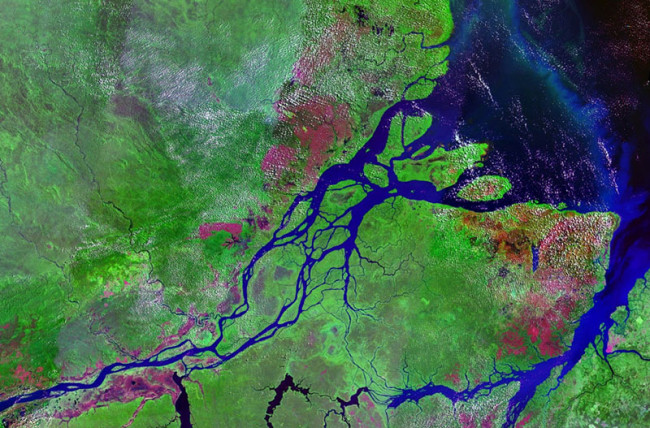 Mouths_of_amazon_geocover_1990.jpg
