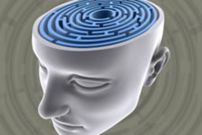 brain-puzzle-maze.jpg
