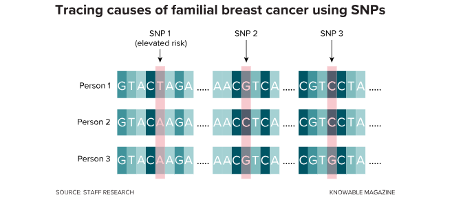 familial breast cancer