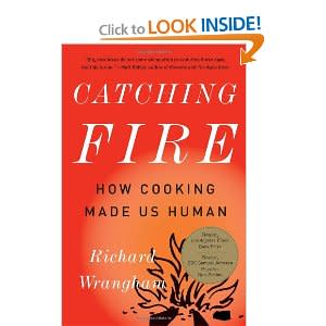 Catching-Fire-Paperback.jpg