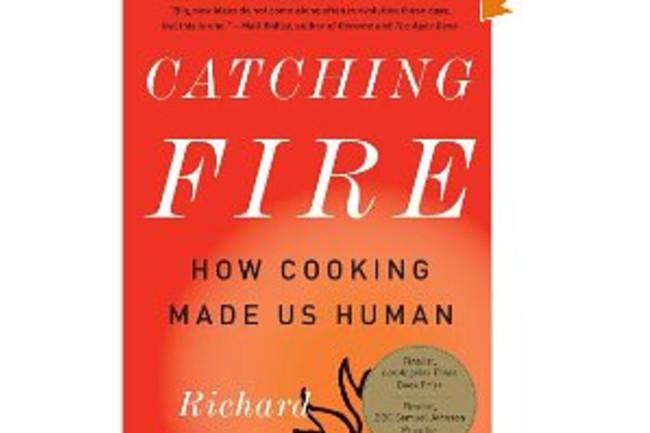 Catching-Fire-Paperback.jpg