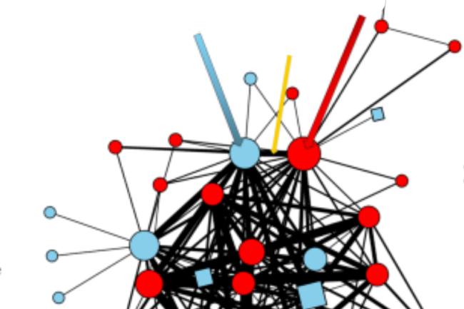 Network - Sara Futch