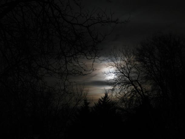 Full-Moon-March-19-2011-1-610.jpg