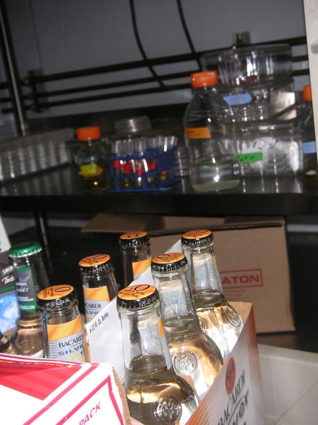 beer-in-lab.jpg