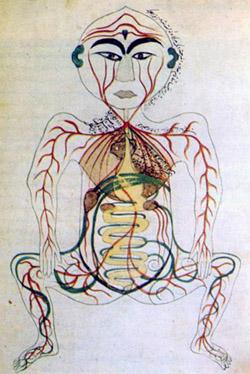 persian_digestive_system.jpg