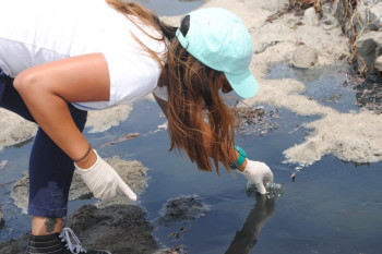 Turning Passion into Protection: Citizen Science at the Beach with the Surfrider Foundation