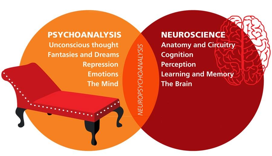 neuropsychoanalysis-chart