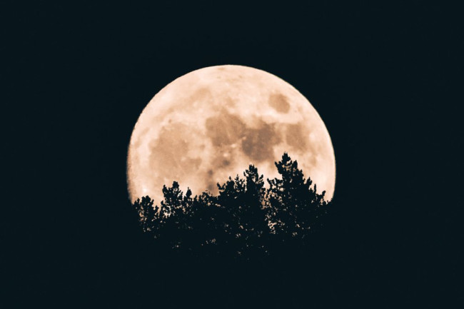Full Moon - Unsplash