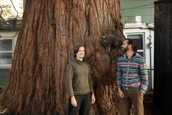 Thousands of People Have Rallied to Save This Giant Tree in a Portland Neighborhood