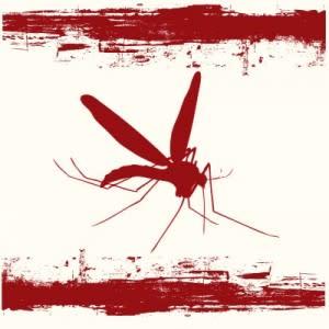 mosquito_danger-300x300.jpg