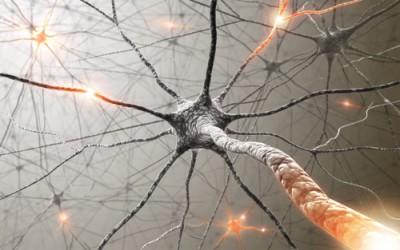 neuron-e1328569374214.jpg