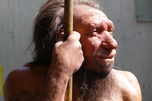 Neanderthal - Flickr