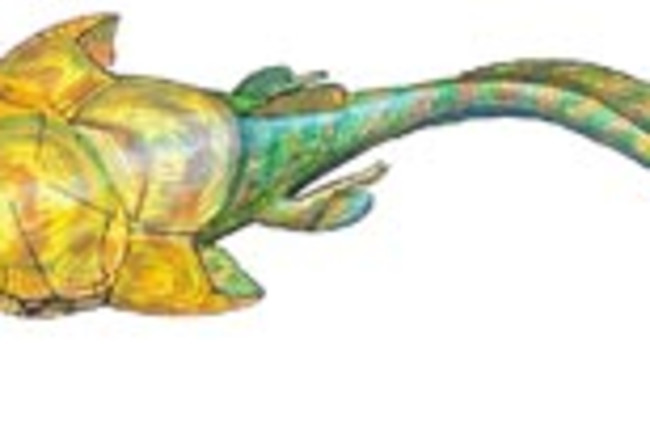 armored-fish.jpg