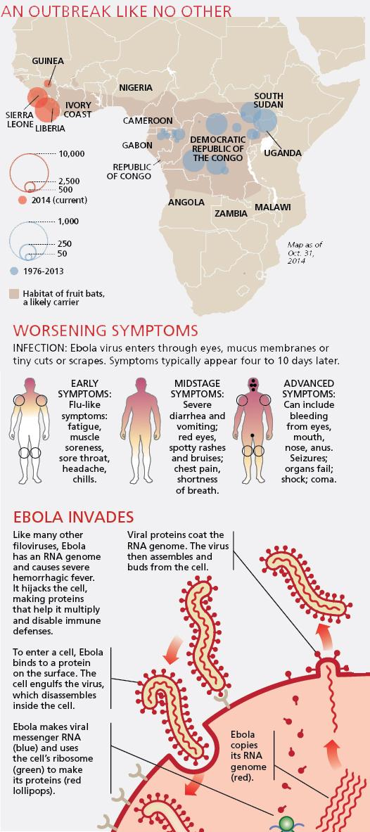 ebola_outbreak.jpg