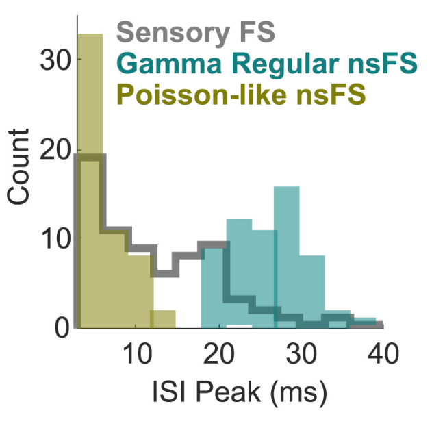 Histogram of Firing Rates - Shin & Moore 2019 Neuron