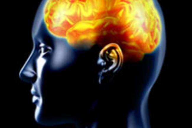 brain-200.jpg