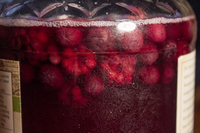 raspberry-kombucha
