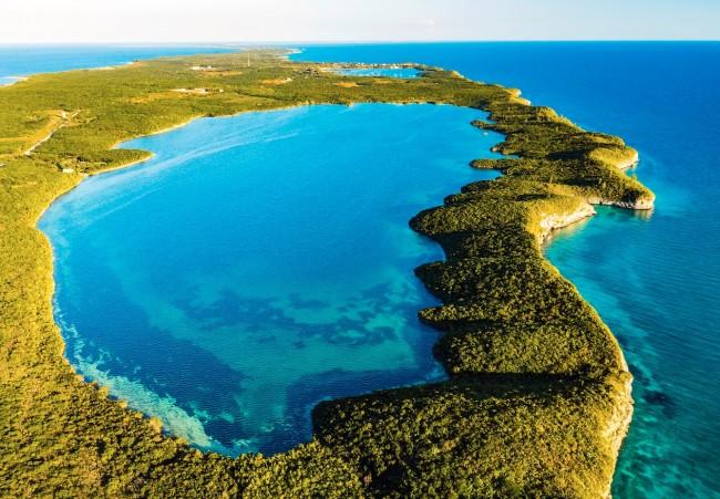 seahorse pond bahamas