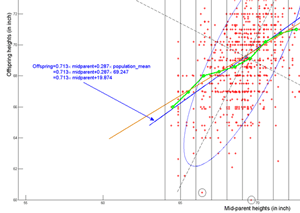 800px-Galton_experiment.png