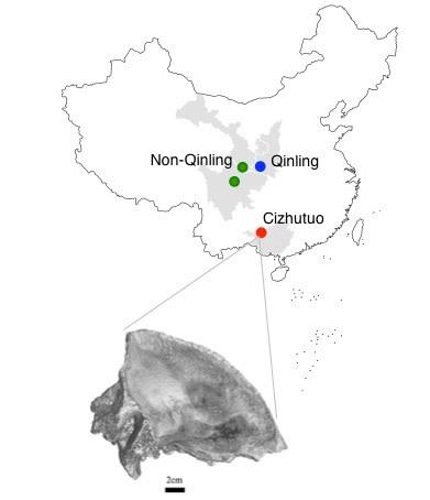 Cizhutuo-map.jpg