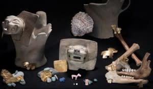 Puma Pots and Such - Teddy Seguin