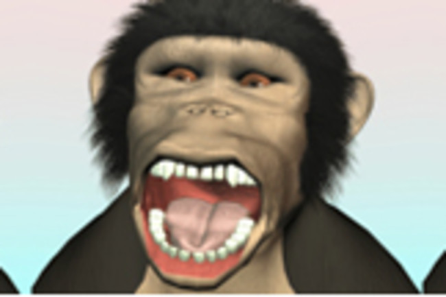 yawning-chimp.jpg