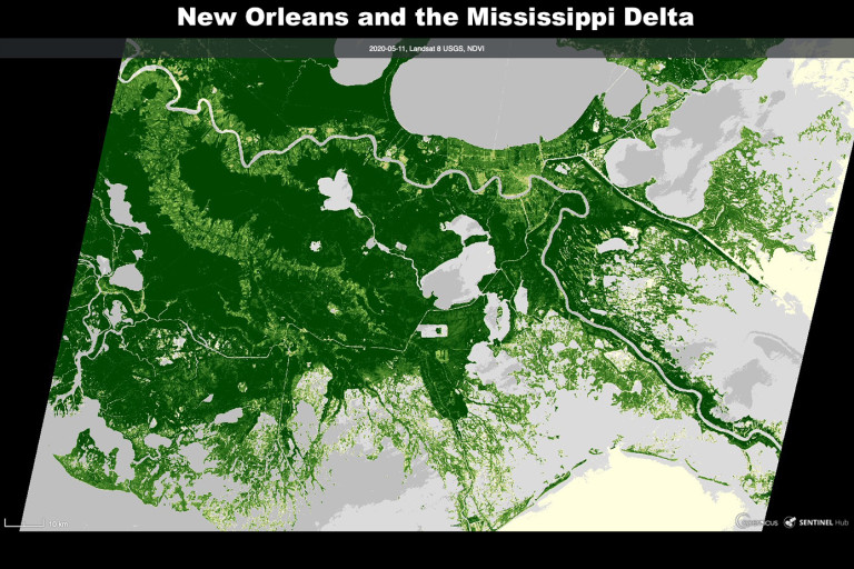 Drowning of the Marshes Protecting New Orleans is 'Inevitable,' New Research Shows