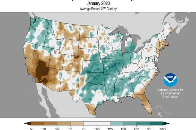 Precipitation Anomalies