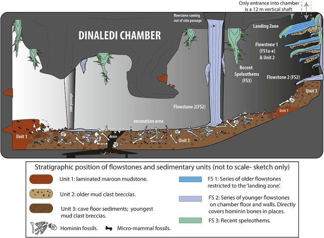 Dinaledi Chamber Diagram - Paul H. G. M. Dirks et al.