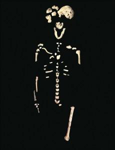 5.neo-skeleton-lesedi-chamber-230x300.jpg