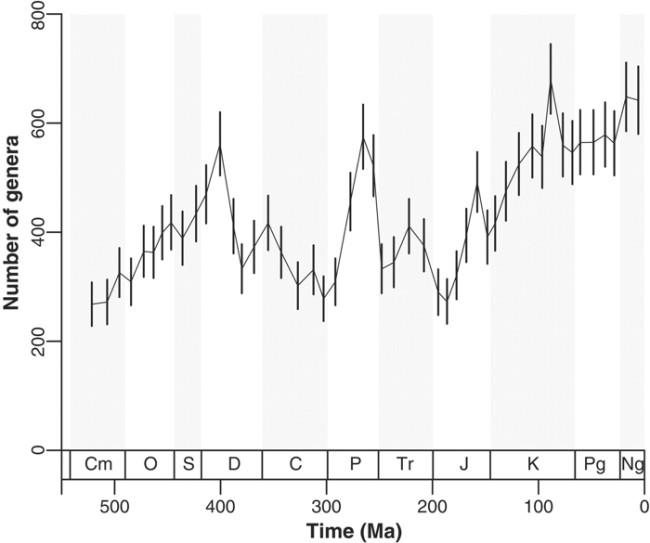 genus-curve-700.jpg