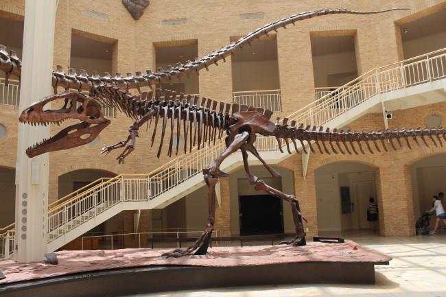 Giganotosaurus at Fernbank
