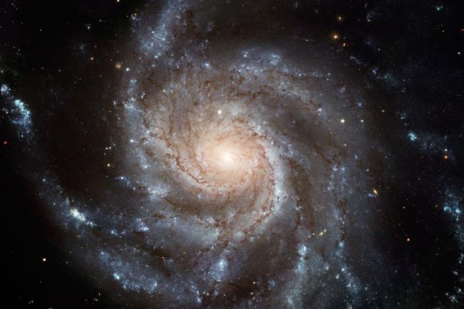 M101-1024x800.jpg