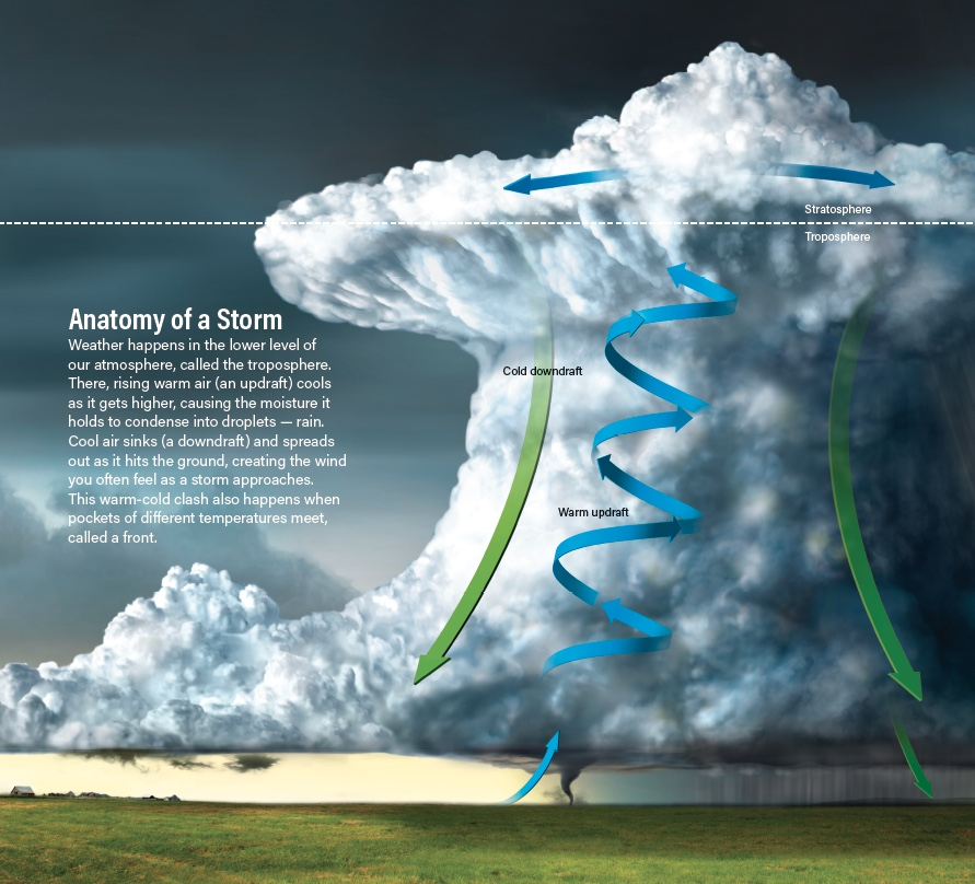Anatomy of a Storm infographic - Kelly/Discover