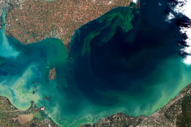 Lake-Erie-algal-bloom-11.jpg