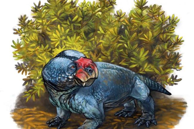 bulbasaurus.jpg