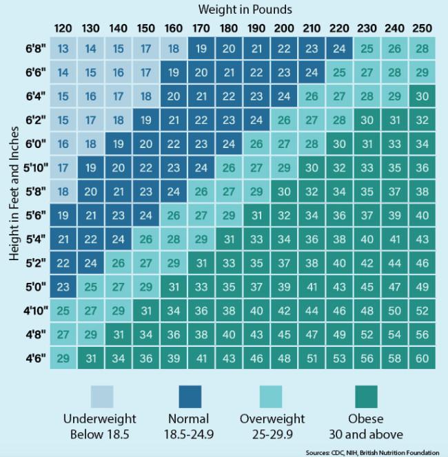 BMI Table - Discover