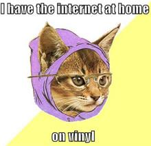 hipster-cat.jpg