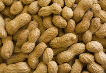 A New Drug for Peanut Allergies Is Offering Hope for Food Allergy Sufferers