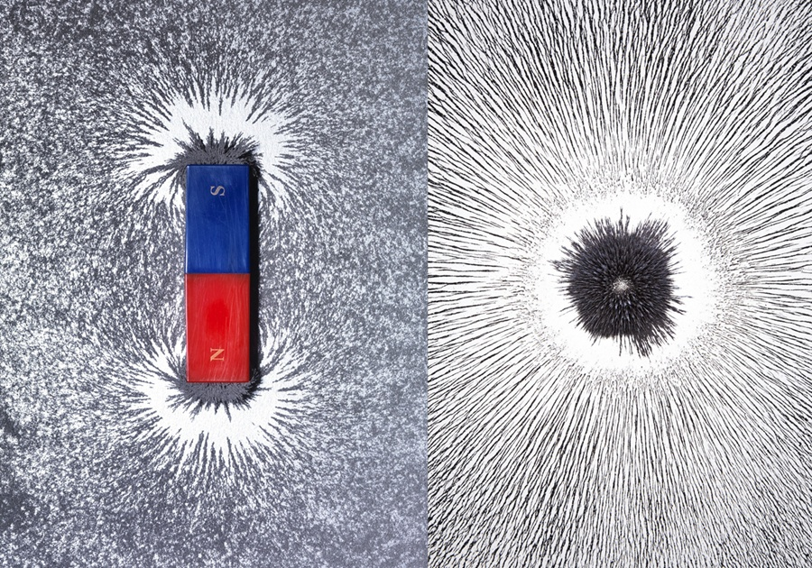Scientists Hunt for A Seeming Paradox: A Magnet With Only One Pole
