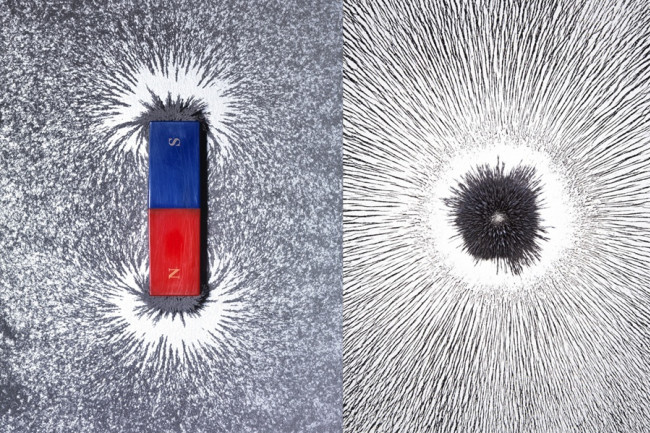 Magnetic Monopoles - Science Source/Getty
