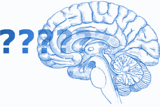 Brain with Question Marks Header - Neuroskeptic