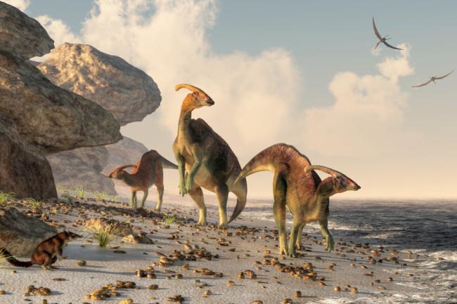 dinosaur water beach - shutterstock