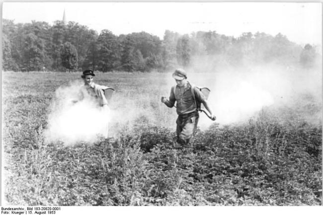 DDT spraying