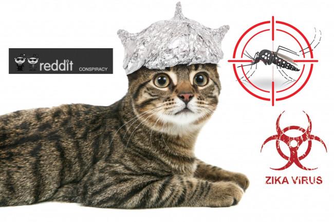 ZIka_conspiracy_theory_cat-1024x720.jpg