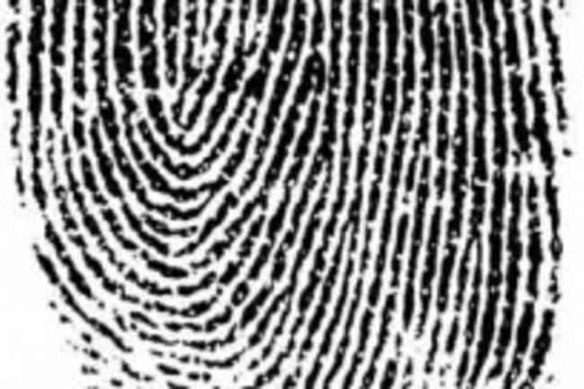 fingerprint-205x400.jpg
