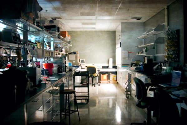 6 Ways the Coronavirus Pandemic Changed Science