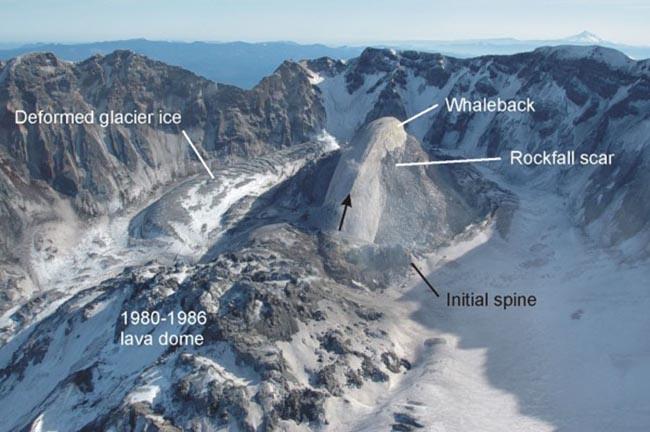 Mount St. Helens Whaleback
