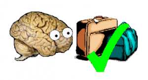 neuroskepticarrives-300x163.png