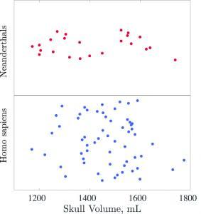 Neanderthal vs. Human Head Volumes - researchers